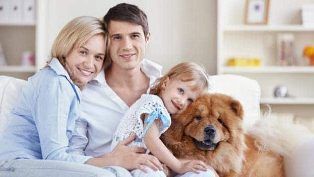 Wills & Trusts dog-young-family Direct Wills Leighton Buzzard